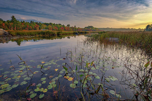 Wall Art - Photograph - Morning At Compass Pond by Rick Berk