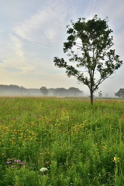 Photograph - Morning Clouds In Chain-o-lakes State Park by Ray Mathis