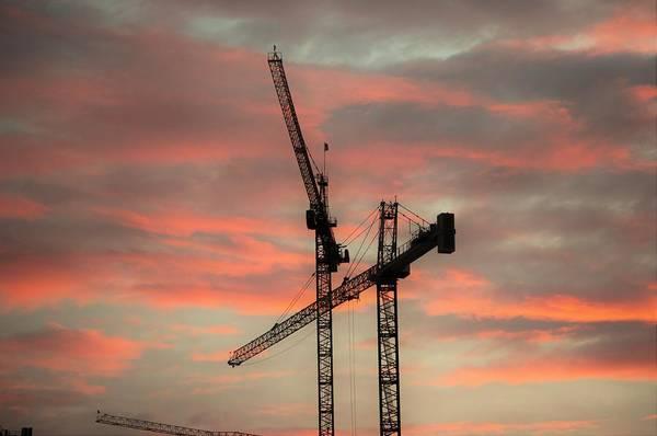 Photograph - Morning Crane by Buddy Scott