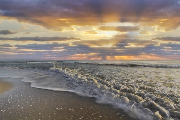 Photograph - Morning by Debra and Dave Vanderlaan