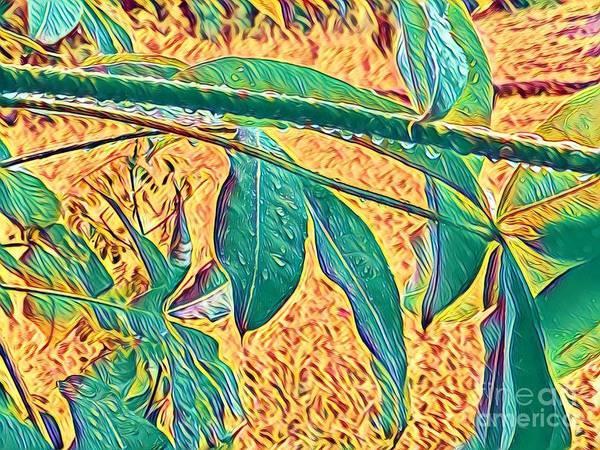 Morning Dew Drops In Puna Art Print