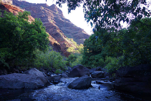Wall Art - Photograph - Morning Dip Canyon Stream  by Kevin Smith