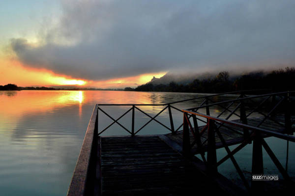 Photograph - Morning Dock by Susie Loechler
