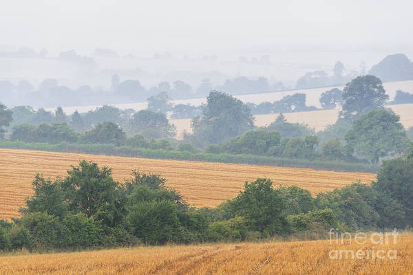 Wall Art - Photograph - Morning Down In Alresford by Richard Thomas