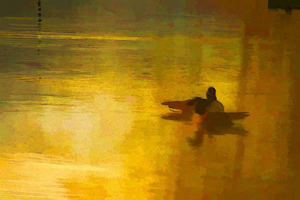 Chs Digital Art - Morning Ducks by Ches Black