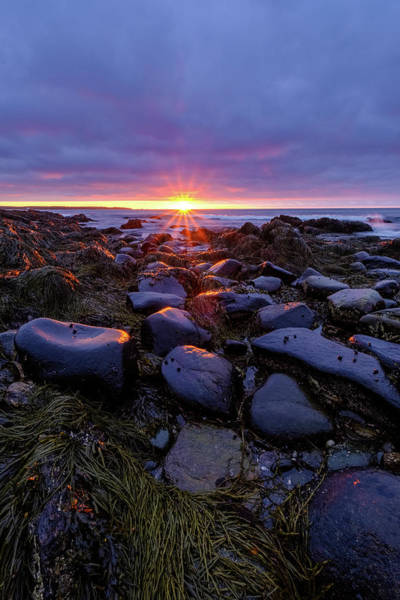 Photograph - Morning Fire, Sunrise On The New Hampshire Seacoast  by Jeff Sinon