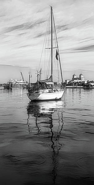 Photograph - Morning Float In Black And White Sketch by Debra and Dave Vanderlaan