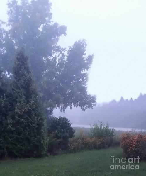 Photograph - Morning Fog by Diamante Lavendar