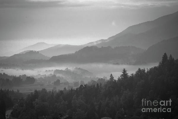 Wall Art - Photograph - Morning Fog In The Mountains by Juli Scalzi