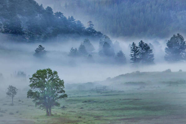 Photograph - Mountain Fog by James Woody