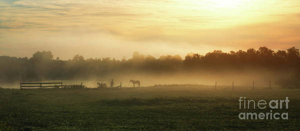 Wall Art - Photograph - Morning Fog  by Michael Ver Sprill