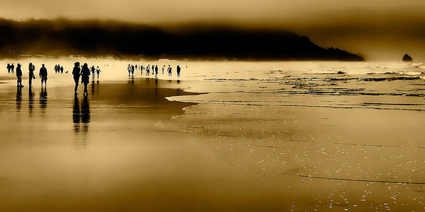 Wall Art - Photograph - Morning Fog On Cannon Beach by David Patterson