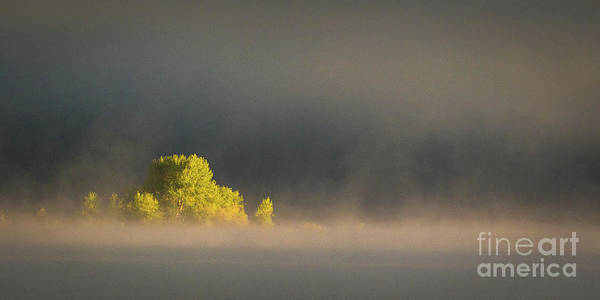 Photograph - Morning Fog On Jackson Lake Grand Teton National Park  by Brandon Bonafede