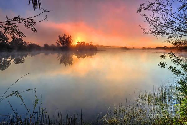 Wall Art - Photograph - Morning Fog by Rick Mann