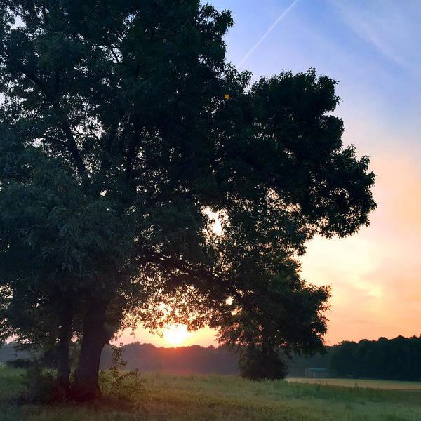 Sunshine Photograph - morning glory 16AUG15 by Greg Joens