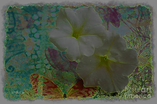 Photograph - Morning Glory Fantasy by Donna Bentley