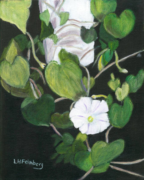 Painting - Morning Glory by Linda Feinberg