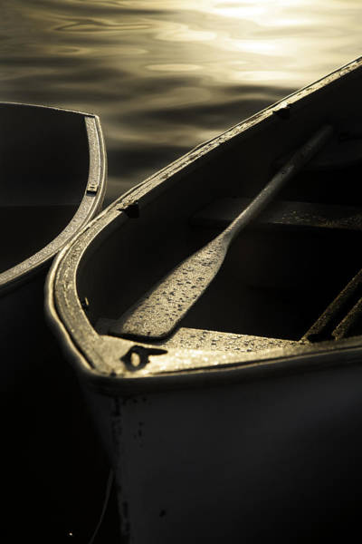 Dinghies Photograph - Morning Glow Rowing by Nicole Robinson