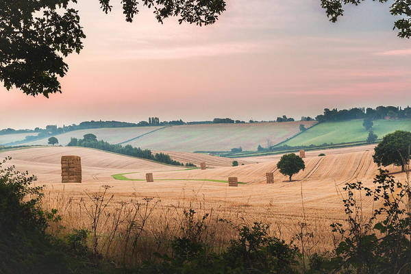 Hay Bale Wall Art - Photograph - Morning Hay by Chris Dale