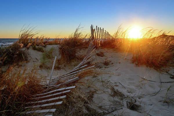 Photograph - Morning Heat by Michael Scott