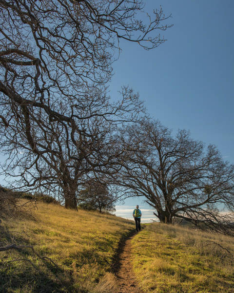 Wall Art - Photograph - Morning Hike by Joseph Smith