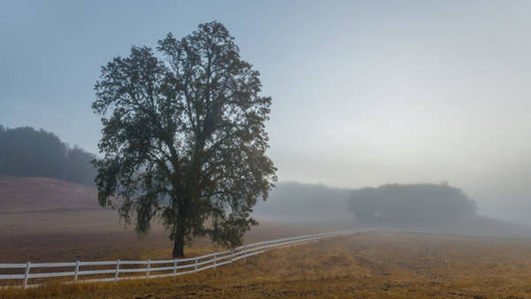 Wall Art - Photograph - Morning In Paso Robles by Joseph Smith