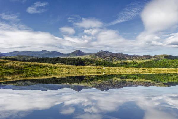 Photograph - Morning Lakeside by Ian Mitchell