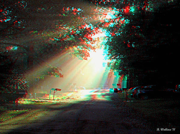 Anaglyph Photograph - Morning Light - Use Red-cyan 3d Glasses by Brian Wallace