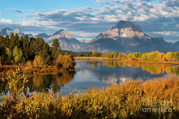 Photograph - Morning Light At Oxbow Bend Two by Bob Phillips