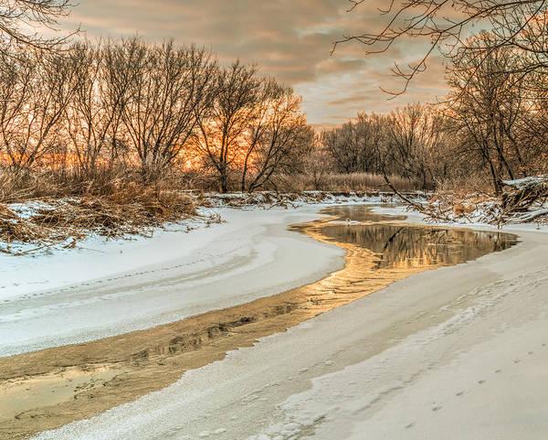 Morning Light On The Riverbank Art Print