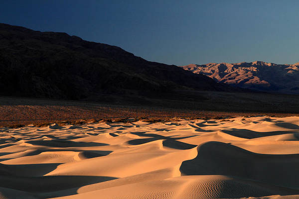 Photograph - Morning Light On The Sand Dunes Of Death Valley by Pierre Leclerc Photography