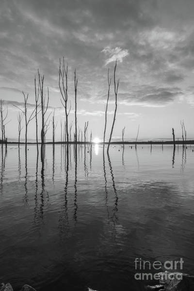 Wall Art - Photograph - Morning Light Over A Lake Bw by Michael Ver Sprill