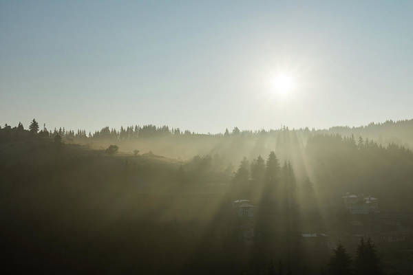Photograph - Morning Mist Sunrays by Georgia Mizuleva