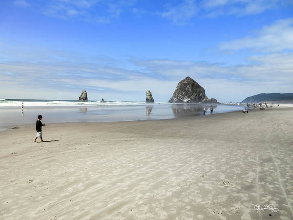 Photograph - Morning On Cannon Beach by Susan Molnar