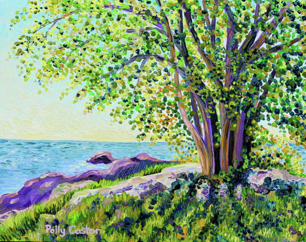Painting - Morning On Chaffinch Island by Polly Castor