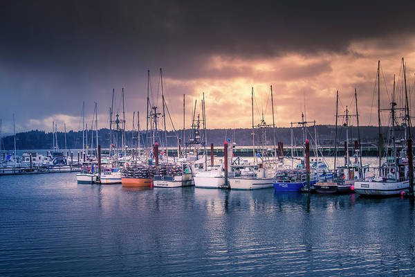 Photograph - Morning On The Bay by Bill Posner