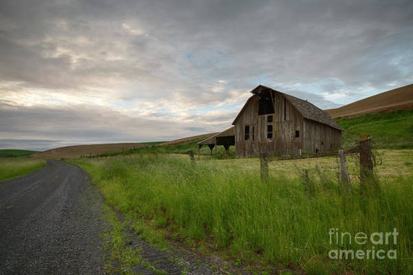 Wall Art - Photograph - Morning Palouse Road by Idaho Scenic Images Linda Lantzy