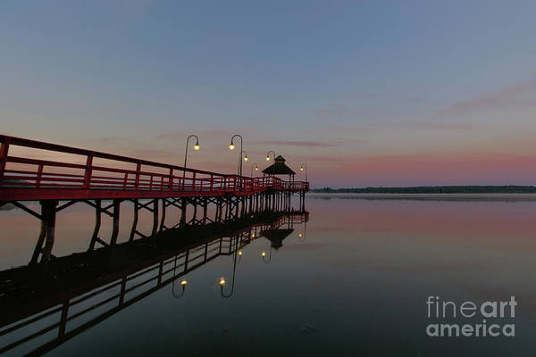 Photograph - Morning Pier by Rod Best