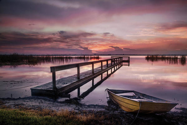 Photograph - Morning Pinks After The Rain by Debra and Dave Vanderlaan