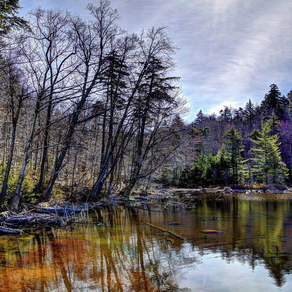 Chain Of Lakes Photograph - Morning Reflections by David Patterson