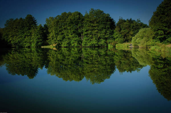 Photograph - Morning Reflections by Miguel Winterpacht