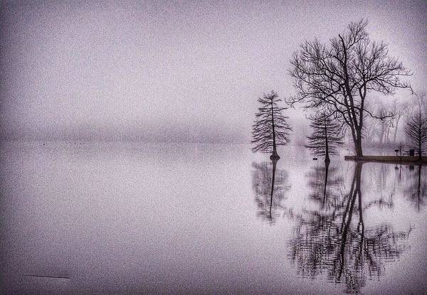 Morning Reflections Art Print