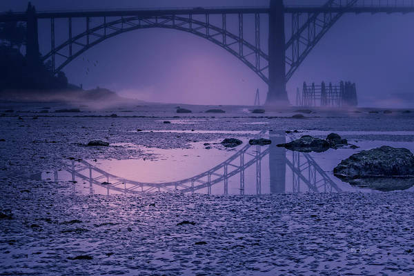 Photograph - Morning Reveal by Bill Posner