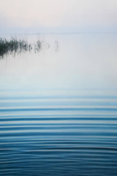 Photograph - Morning Ripples by Parker Cunningham