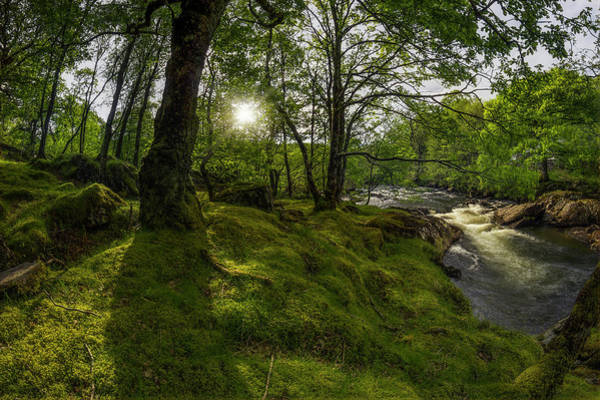 Photograph - Morning River Sun by Ian Mitchell