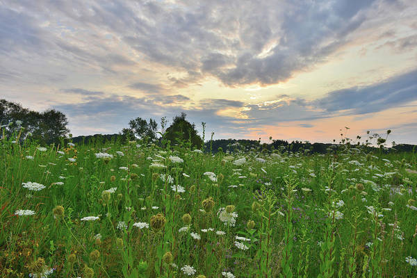 Photograph - Morning Sky Over Pleasant Valley by Ray Mathis