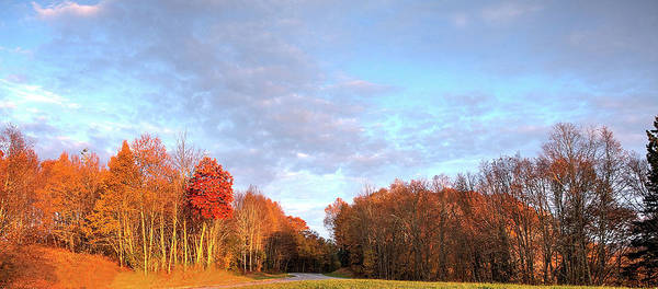 Photograph - Morning Sky by Ree Reid