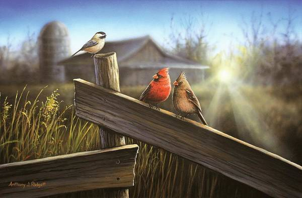 Silo Painting - Morning Song by Anthony J Padgett
