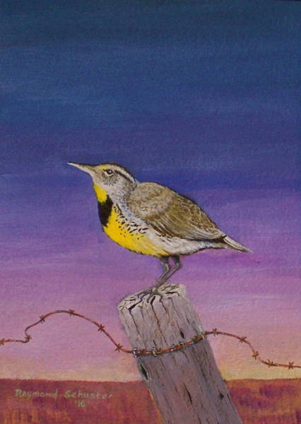 Meadow Lark Painting - Morning Song by Raymond Schuster