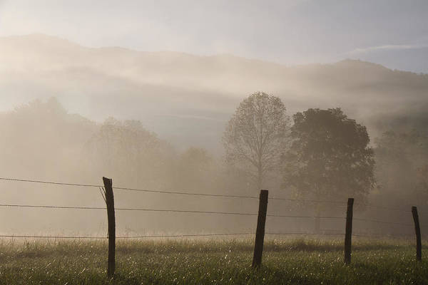 Wall Art - Photograph - Morning Sparks by Lana Trussell